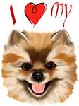 I Love My Pomeranian