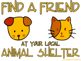 FIND A FRIEND AT YOUR LOCAL ANIMAL SHELTER