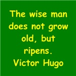 vctor hugo quote