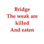 duplicate bridge joke