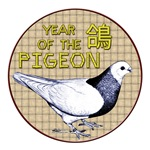 Year of the Pigeon