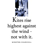 Kites rise