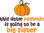 Little Pumpkin Is Going To Be a Big Sister Shirts