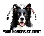MY BORDER COLLIE IS SMARTER THAN YOUR HONORS STUDE
