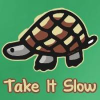 Turtle Lover T-Shirts & Collectibles