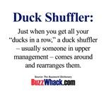 Duck Shuffler