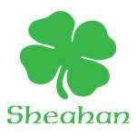 SHEAHAN (SHAMROCK)