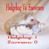 Hedgehog vs. Snowmen