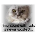 Famous Cats - Sigmund's Cat