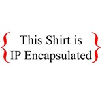 Get IP Encapsulated