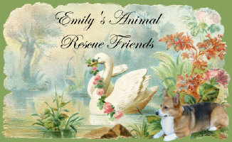 EMILY'S ANIMAL RESCUE FRIENDS