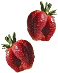 Strawberry Gifts