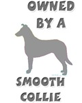 Smooth Collie Pewter