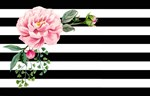 Pink Floral Watercolor Black White