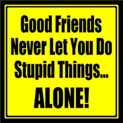 Good Friends Never Let You Do Stupid Things ALONE!