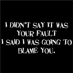 It Wasn't Your Fault, I Was Going To Blame You
