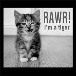 RAWR! I'm a Tiger FUNNY Kitty Kitten