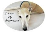 I Love my Greyhound Pastel