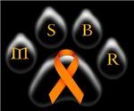 Orange- MSBR
