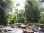 Mateo River