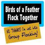 Group Flocking