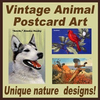 Animal Postcard Art