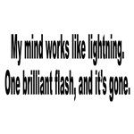 Mind Like Brilliant Lightning Humor