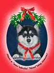 Christmas Malamute Puppy