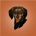 Dachshund pretty face!