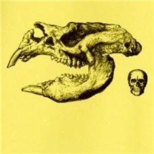 Diprotodon
