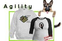 Agility Ability!