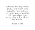 but those who hope in the LORD will renew their st