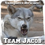 Twilight Team Jacob Mad Wolf Fan Gear