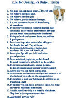Rules for Owning Jack Russell Terriers!