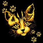Cute Cat Portrait with Paws Prints