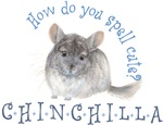 cute chinchilla