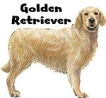 Golden Retriever