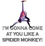 Talladega Nights - Spider Monkey