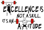 Excellence Is Not a Skill, It's an Attitude