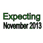 Expecting November 2013
