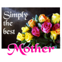 BEST MOTHER T-SHIRTS AND GIFTS