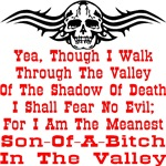 Meanest Son-Of-A-Bitch In The Valley