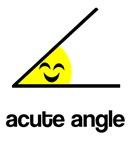 Acute a cute angle