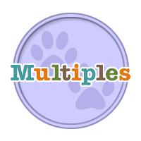 Birthdays for Multiples