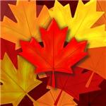 Fall Maple Leafs