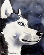 Siberian Husky Stuff