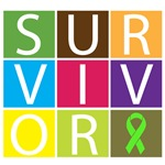 Lymphoma Survivor Box