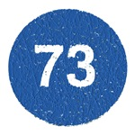 Vintage Blue Sheldon Cooper 73