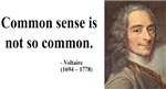 Voltaire 11