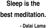 Dalai Lama 20